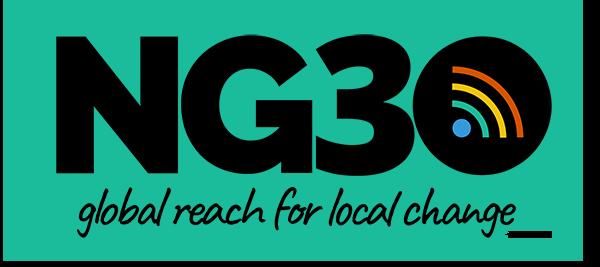 NG3O Logo with claim NG30